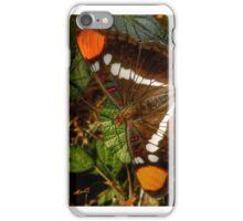 California Lady iPhone Case/Skin