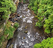 Gorge at Cuyahoga Falls by Kenneth Keifer