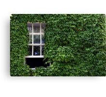 Window on leafy Cotswolds house facade, UK Canvas Print
