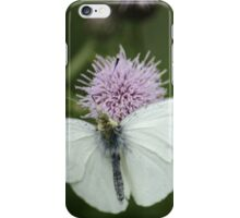 Small White On Thistle iPhone Case/Skin