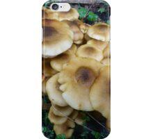 Fried egg fungi iPhone Case/Skin