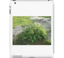 Neighborhood park. iPad Case/Skin
