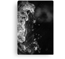 WATERGAMES II Canvas Print