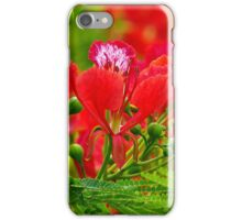 Flamboyant Beauty (Spot) iPhone Case/Skin