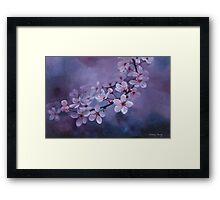 Blossoms on Purple Framed Print