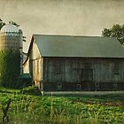 Ivy covered silo by vigor