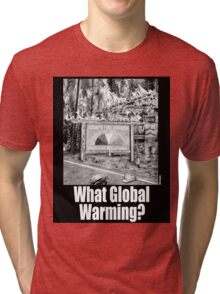 What Global Warming? 2 Tri-blend T-Shirt