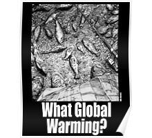 What Global Warming? 3 Poster