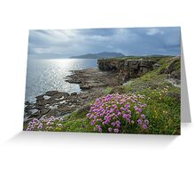 Muckross Head, Co. Donegal Greeting Card