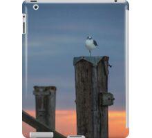 Balancing Act iPad Case/Skin