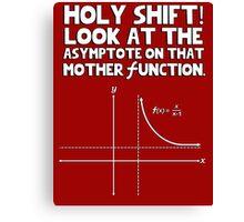 Holy shift look at the asymptote on that mother function Canvas Print