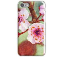 Blossoms 1 iPhone Case/Skin