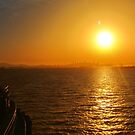 Late Afternoon San Francisco Bay by David Denny