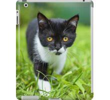 little black kitten in a grass iPad Case/Skin
