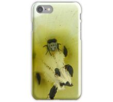 :) bug iPhone Case/Skin