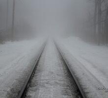 Foggy Tracks by Gilda Axelrod