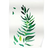 Serenity - original watercolor of a house plant Poster