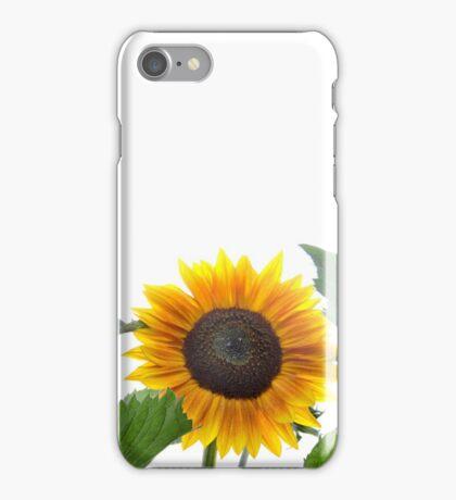 Dwarf Sunflower iPhone Case/Skin