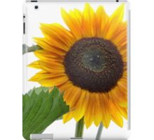 Dwarf Sunflower iPad Case/Skin