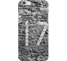 17 iPhone Case/Skin