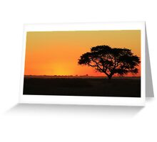 Sunset Gold - Nature Background - African Peace Greeting Card