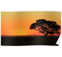 Sunset Gold - Nature Background - African Peace Poster