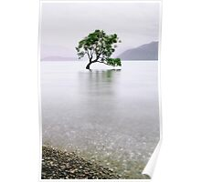 The Tree in the Lake II Poster
