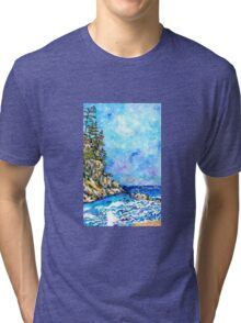 Oswald West State Park Tri-blend T-Shirt