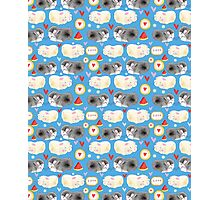 Pattern enamored hamster Photographic Print