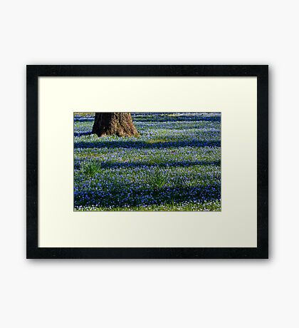 March Bank in Blues  Framed Print