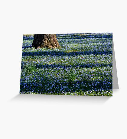March Bank in Blues  Greeting Card
