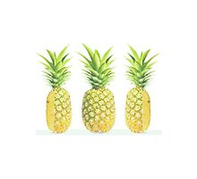 Pineapple Trio by calmkeeper