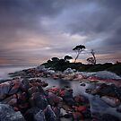 Sunset at Binalong Bay Tasmania by Angelika  Vogel