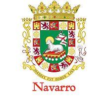 Navarro Shield of Puerto Rico Photographic Print