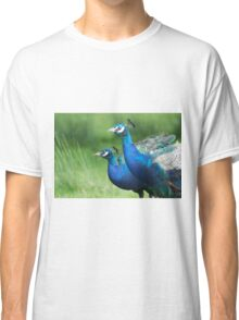 Peacocks in the Park Classic T-Shirt