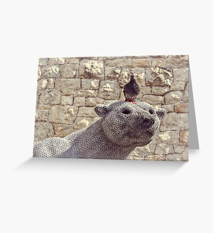 The Polar Bear and the Pigeon Greeting Card