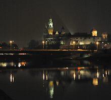 Wawel Castle by night by julie08