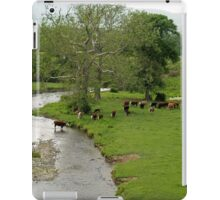 Wallkill Valley Rail Trail View iPad Case/Skin