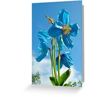 sky blue Greeting Card
