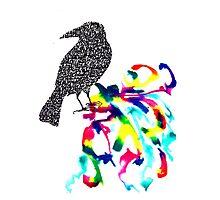 Calligraphic Crow Photographic Print