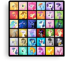 Pony Blocks Canvas Print