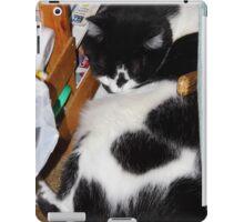 Quincy Sleeping iPad Case/Skin