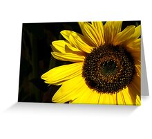 The Sunflower and the Wasp Greeting Card