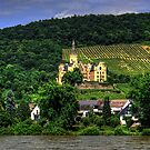 Schloss Arenfels by Tom Gomez
