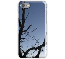 Silhouette of a Tree iPhone Case/Skin