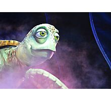 Crush - Finding Nemo: the Musical Photographic Print