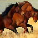 Wild Horses Of The Open Range by Arla M. Ruggles