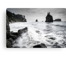 Waves - Olympic National Park Canvas Print