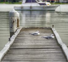 Bolton Point Jetty by dlukej