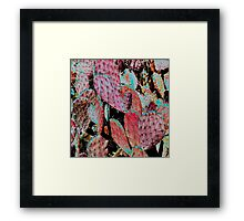 Ruby Red Prickly Pear Cactus Framed Print